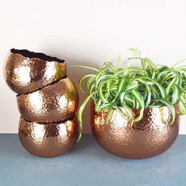 For those of you wishing to join the copper trend in style you can't beat these gorgeous curvy hammered copper plant pots.