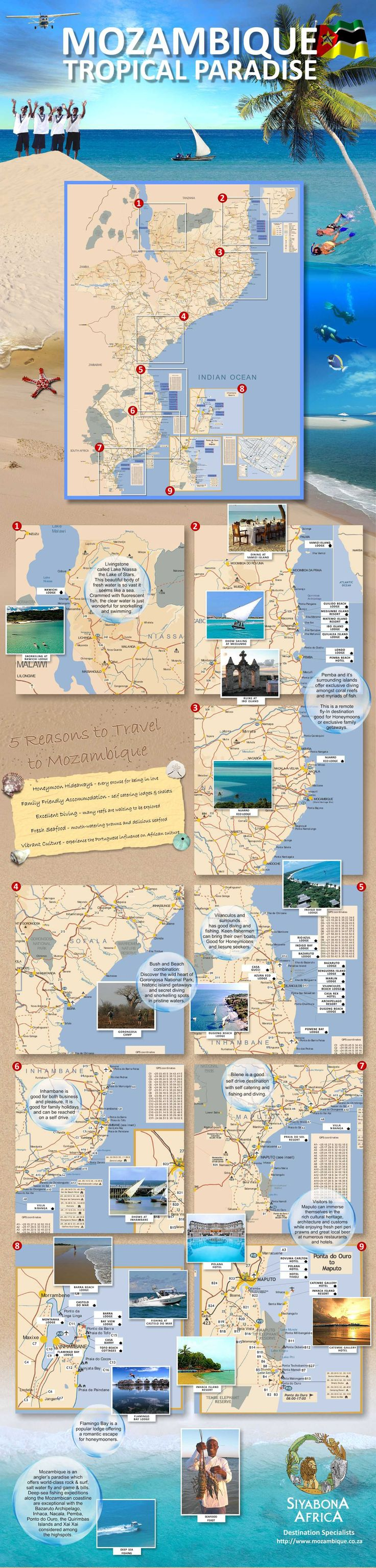 http://www.mozambique.co.za/images/mozambique-infographic.jpg