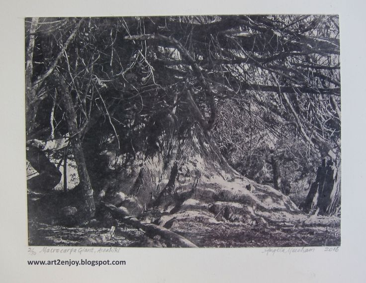 Photogravure etching from my own photo.