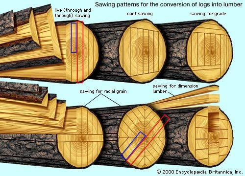quarter sawing for a newbie - by yellabret @ LumberJocks.com ~ woodworking community