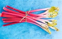 Discover How To Cook Rhubarb: Recipes and Tips