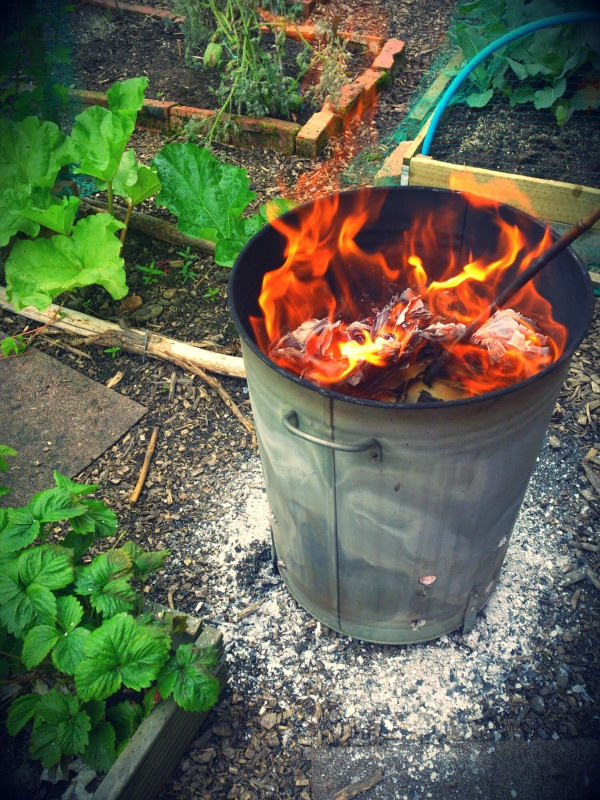 One of the many pleasures of having an allotment. Stand around, watch the fire, drink tea.