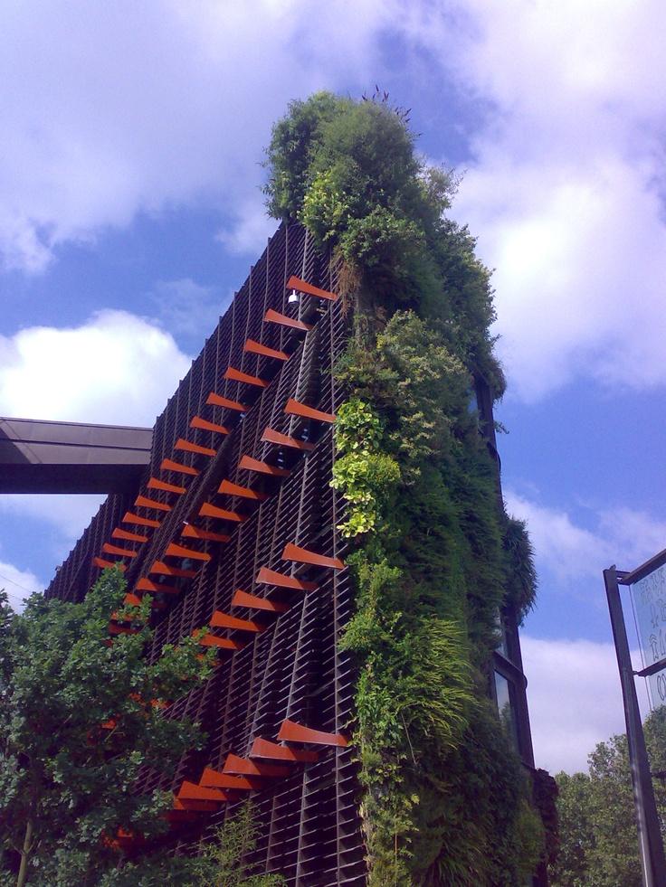Giardini pensili: più che Architettura, un ritorno alla Natura necessario nelle nostre città sovraffollate di macchine e cemento.