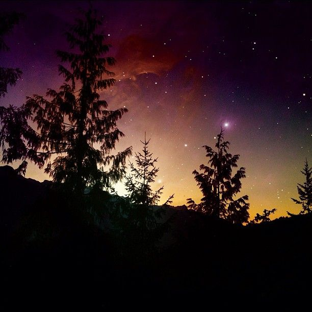 When you wish upon a star...  Photo by Melissa Hetu