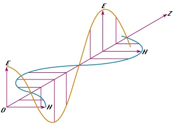 Wireless communications rely on radio waves which are electromagnetic waves. An electromagnetic wave consists of an electric field component & a magnetic field component, the electric field & the magnetic field components are perpendicular to each other, and they are in phase.     When the electric field component of the wave is perpendicular to the earth surface then the wave is vertically polarized. When the electric field is parallel to the earth surface then it is horizontally polarized.