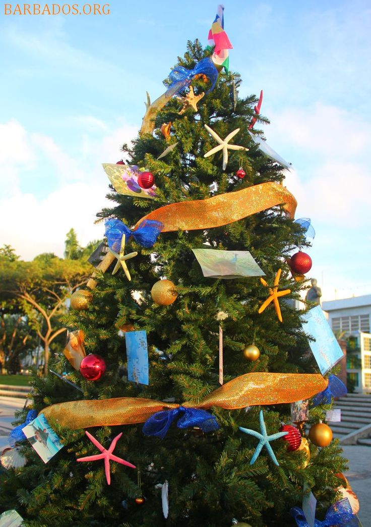 One of the 64 Christmas trees on display in Barbados capital city Bridgetown. The trees represent the countries of the Commonwealth.