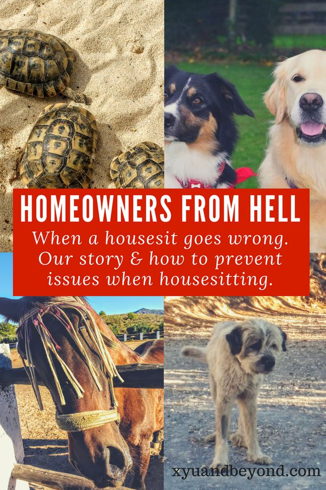When a Housesit Goes Bad - The Homeowner From Hell