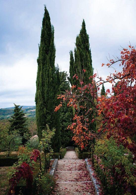 Renaissance Italian garden