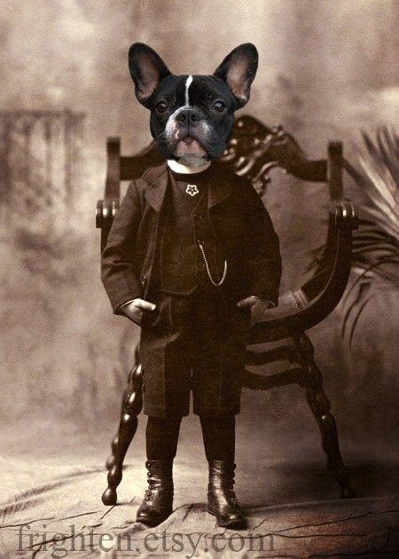 French Bulldog Art impression 5 x 7 victorien Boy par frighten