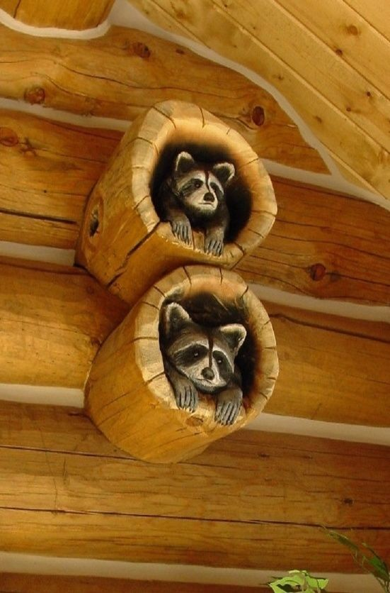 Coons Hand Carved On Cabin  Wood  Home Accessories