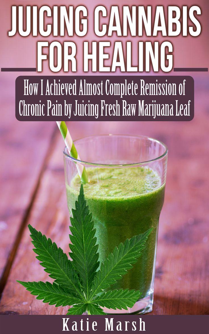 Juicing Marijuana Provides Tasty Alternative to Smoking for Medicinal Value and Chronic Pain