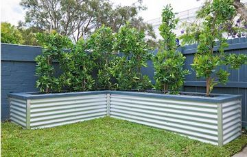 Creating a planter box: Planter boxes provide two purposes, keeping roots clear of pipes and footings and providing instant height. Before building a large raised bed, check your council regulations.