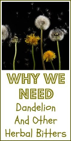 Dandelion and other herbal bitters are thought to be good for our digestion. Here's why you may want to think about adding them to your diet.