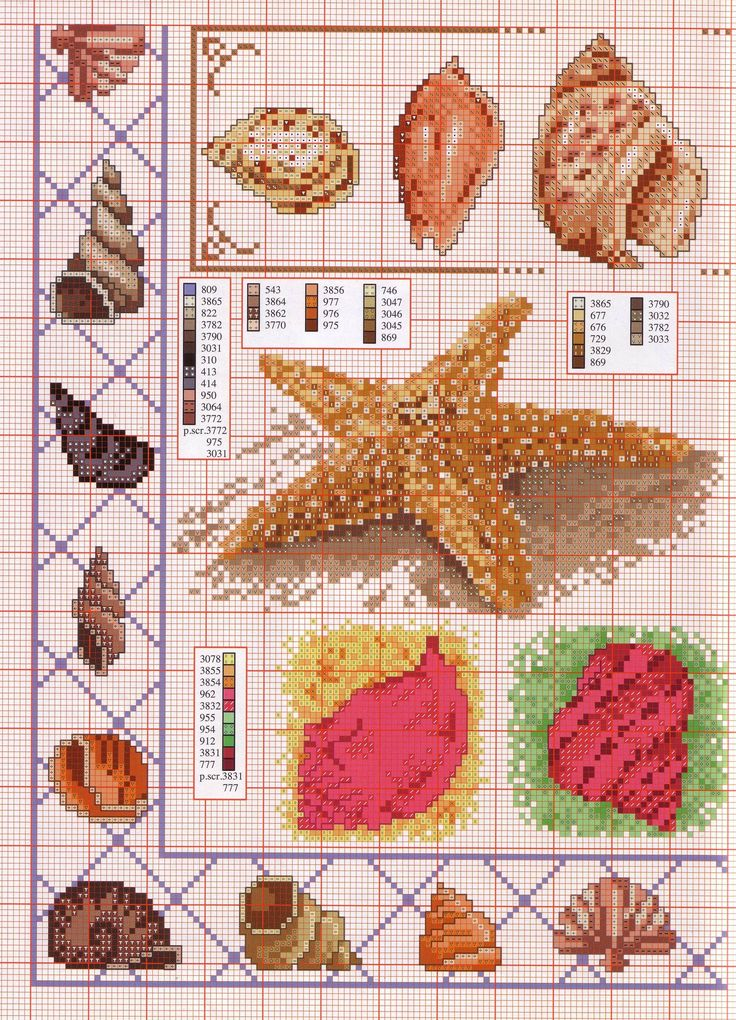 cross stitch seashells/starfish