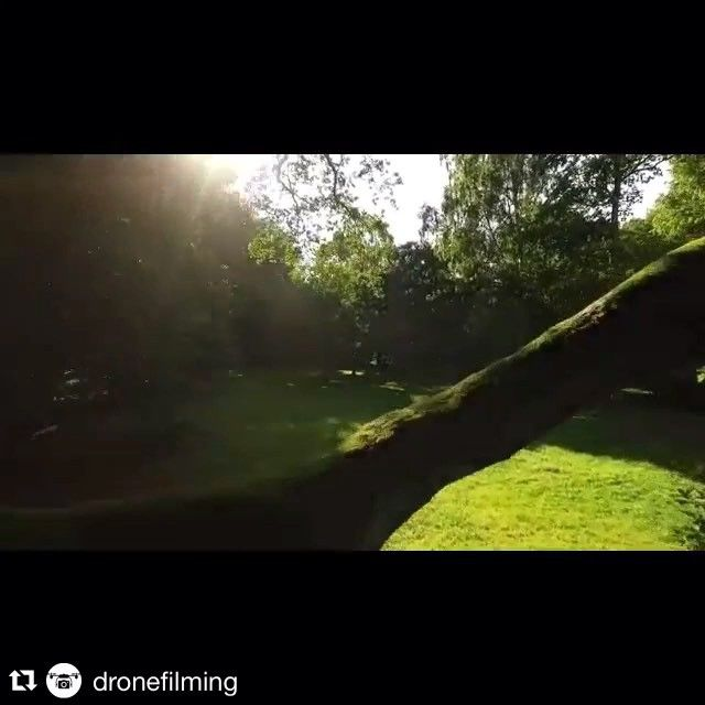 #Repost @dronefilming with @repostapp.  Flight No. 25 Tree branch and sun  #park #beautiful #droneflight #dronefly #drone #drönare #drönarfoto #flygfoto #drönarfotografering #drönarfilmning #dronesdaily #flyingcamera #dronefans #dronephoto #dronestagram #jakeinthesky #dronephotography #dji #phantom3 #4k #quadcopter #djiglobal #aerialfilming #aerialphoto #dronebois #aerialphotography #dronelife #malmo #sweden by dronefilming
