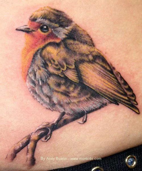 robin bird tatto - Google Search                                                                                                                                                      More