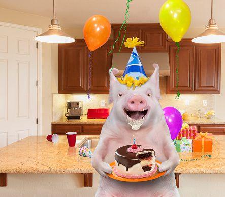 поросенка с днем рожденья или рождения поздравления знаки показывают другим
