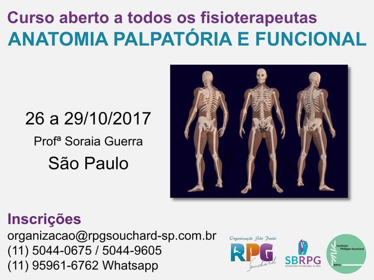 Formação avançada em Anatomia Palpatória e Funcional