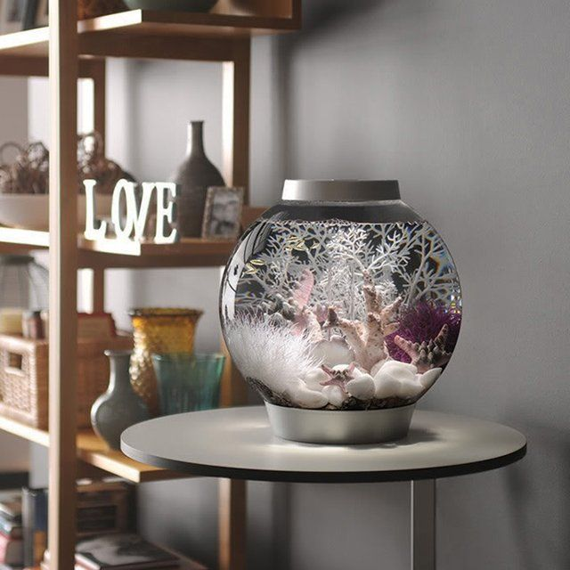 If you're looking for a simple starter aquarium, check out the All-In-One 4 Gallon Globe Aquarium. Made of durable acrylic, it's an easy way to keep 3 to 4 minnow-sized freshwater fish. Maintenance is easy, too — simply replace the filter cartridge every six weeks, and change a third of the water every two weeks.  Includes LED lamp, low-voltage pump and everything else you need to get started. Just add water and fish. Available in black or silver. Please allow 1-2 weeks for delivery.