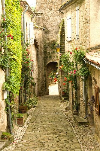 French village wall gardens: Favorite Places, Romantic Roads, Beaten Paths, Dreams, Beautiful Places, Rothenburg Germany, Germany Romantic, Travel, French Village