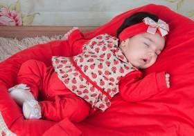 Kit Saída Maternidade Menina Inverno Rosa De Plush - R  119 c5035e13980