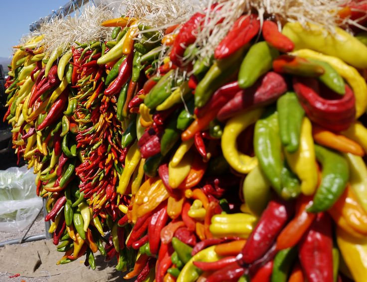 Chiles:   Best Season: autumn/  Color Matches: green, orange, red/  Cuisine Matches: Afghan, southern African, west African/  Flavor Matches: achiote, chocolate