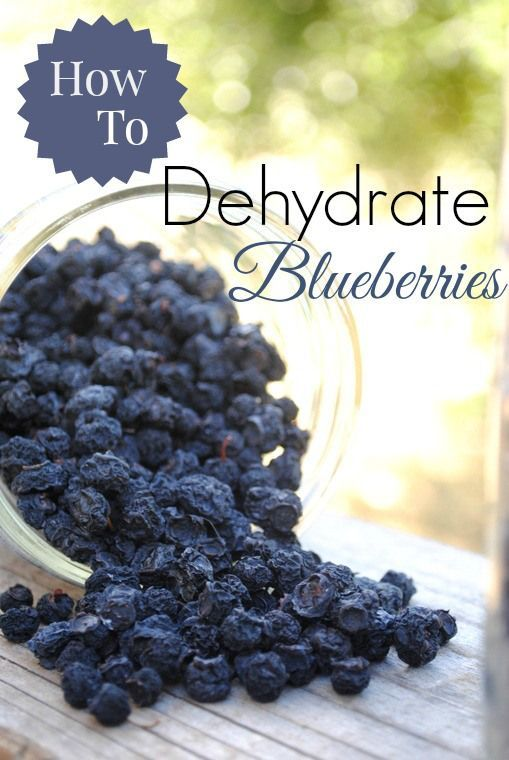 How To Dehydrate Blueberries