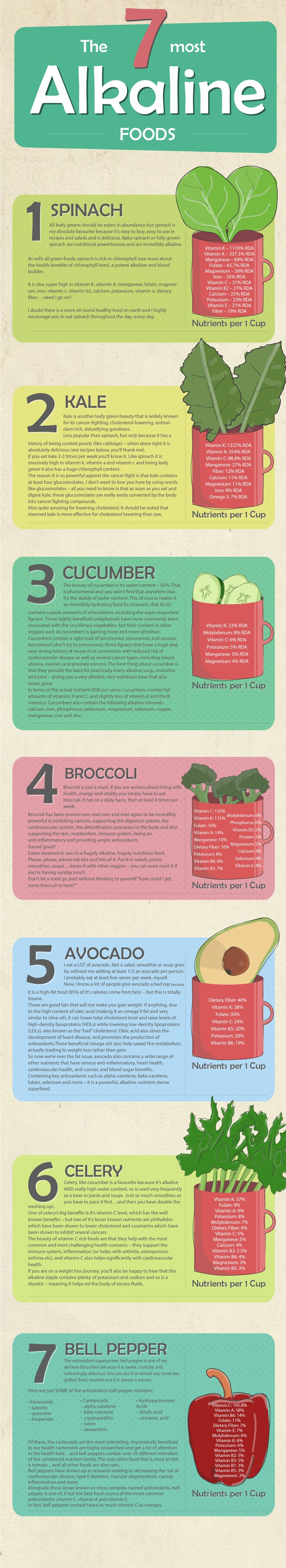 The 7 most Alkaline foods Infographic is one of the best Infographics created in the Food category. Check out The 7 most Alkaline foods now!