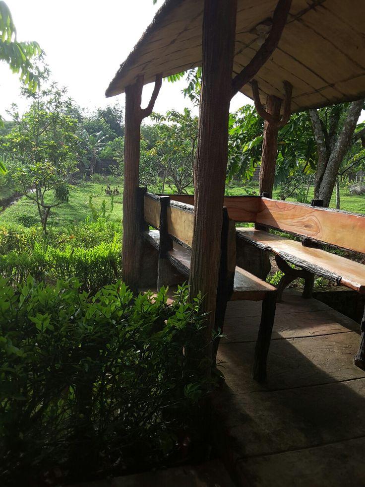 Kebun buah @Rindang Alam Resto, Pontianak
