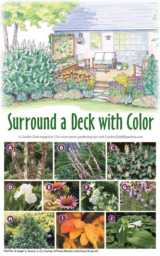 Colorful deck planting plan
