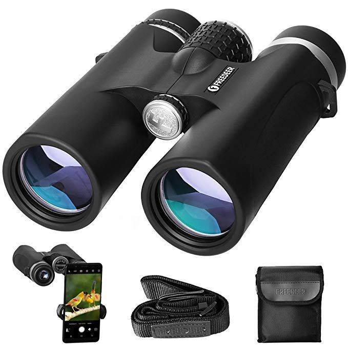 10x42 Binoculars For Adults Compact Binocular For Bird Watching Sightseeing Travel Hunting Concerts Sports Bak4 Roof Prism Binoculars Phone Mount Sightseeing