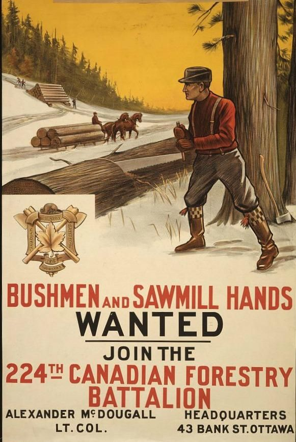 """Canadian WWI Propaganda Poster, found via Mental Floss - """"Those who didn't want to fight (or couldn't sign up for the army due to health issues or old age) but still wanted to serve their country could enroll in the military by joining the Canadian Forestry Battalion, which cleared areas for camps and air strips."""""""