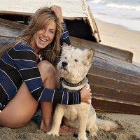 Jennifer Aniston está embarazada a sus 45 años.