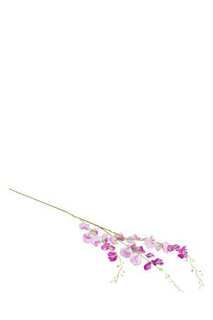 """This pretty artificial single stem sweet pea flower is the ideal filler to add height and fullness to any floral arrangement. Arrange in a cylinder glass vase to make a beautiful centre piece or to compliment your feminine interior.<div class=""""pdpDescContent""""><BR /><b class=""""pdpDesc"""">Dimensions:</b><BR />L115 cm</div>"""