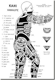 17 best images about tatouage on pinterest samoan tattoo manta ray tattoos and dolphins - Tatouage tribal signification ...