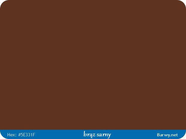Kolor RGB HEX 5E331F - brąz sarny - Fawn brown - Rehbraun - Brun fauve - płowy - Barwy.net