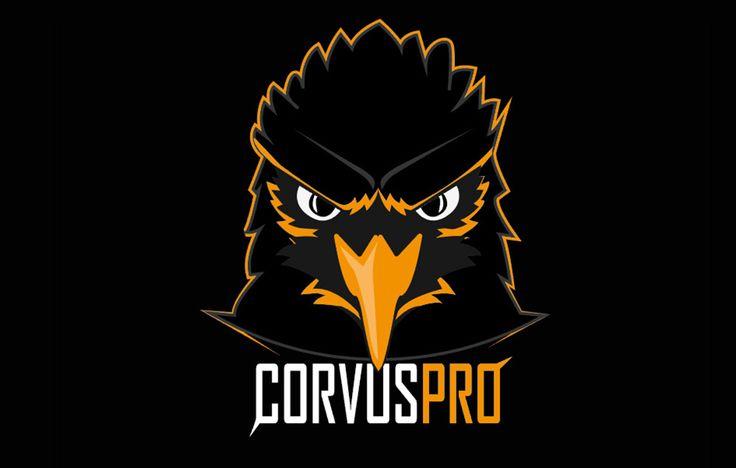 """Corvus.Pro eSports hat mich damals beauftragt, Ihnen ein komplett neues Gesicht zu verleihen von der Webseite bis hin zum Social Media Auftritt. Ihr Wunsch war es ein Raben als Logo zu nehmen. Damals habe ich eher ungerne Tiere als Logos erstellt, weil ich darin noch nicht so gut war, meiner Meinung nach aber ich probiere mich aus und bastel solange bis ich sage """"Jap"""" , dass ist es. Diese Zusammenarbeit war hervorragend, bis heute stehen wir noch im engen Kontakt und kriege immer wieder…"""