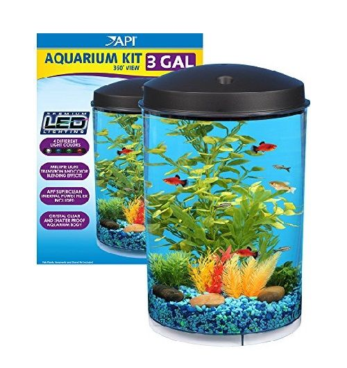 108 best images about betta fish tanks on pinterest for Betta fish filter