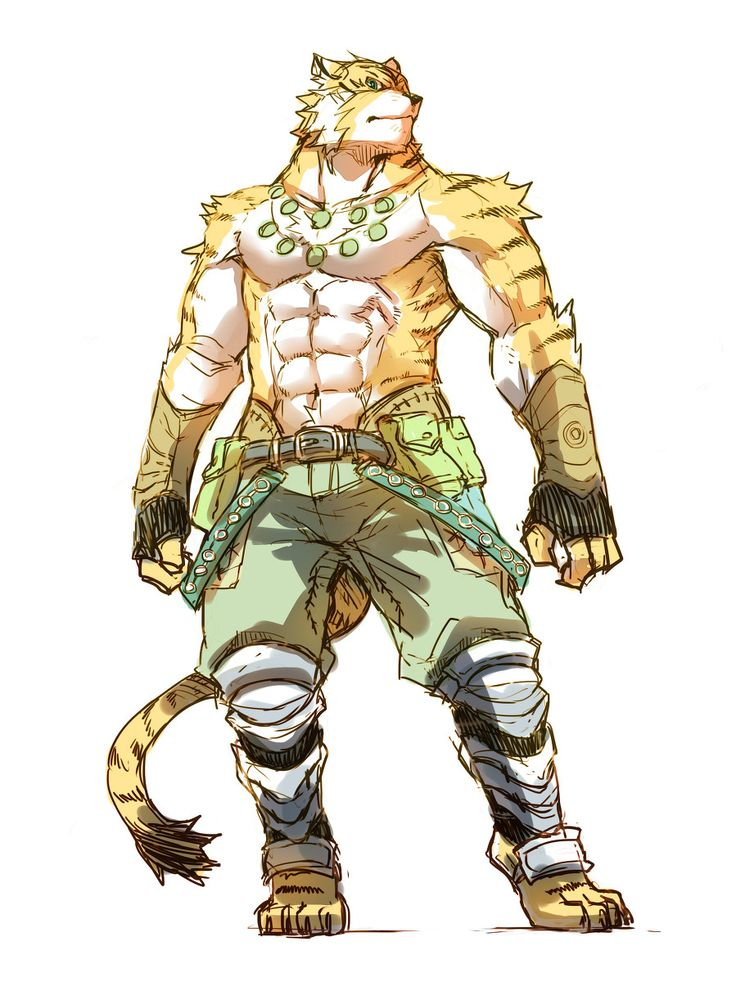 tigers vs warriors - 599×800