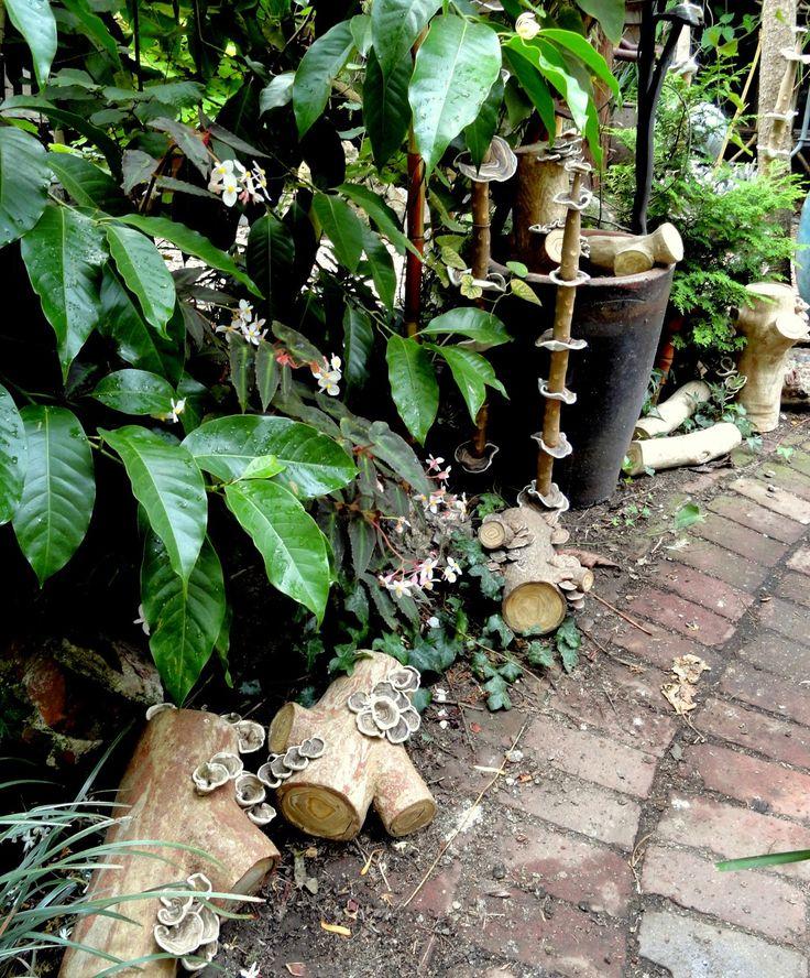 Danger Garden: The Garden Of Marcia Donahue · Dry GardenGarden ArtGarden  SculpturesBay AreaFront ...