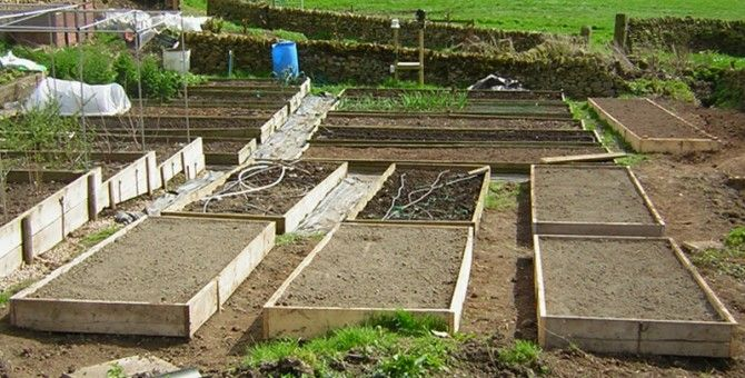 Raised Beds, 02