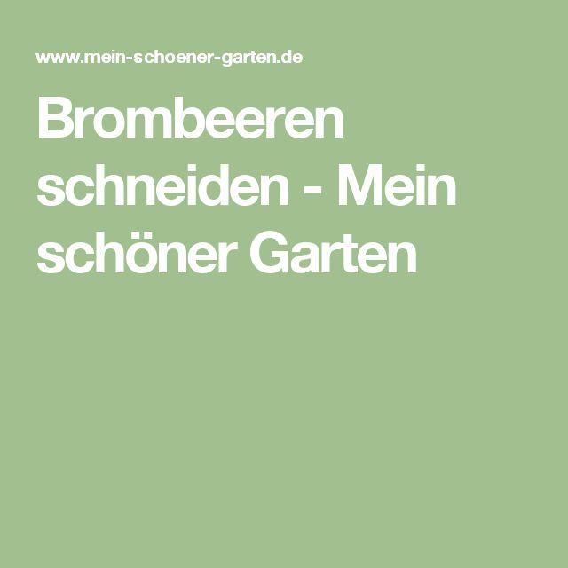 Brombeeren schneiden - Mein schöner Garten