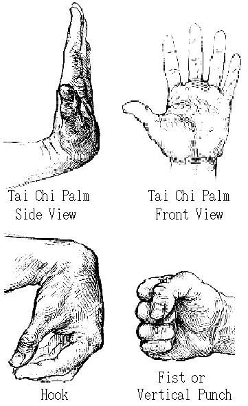 Tai Chi Quan | Some hand positions
