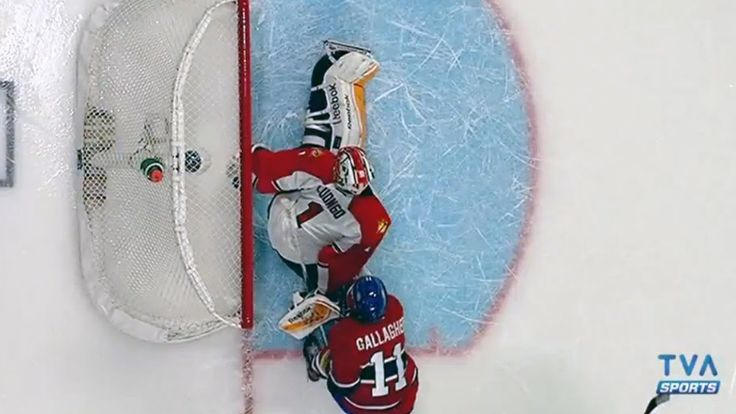 #FLA  #Panthers #Luongo reaches back to rob  Tomas #Plekanec   #CZE  #MTL #Canadians #habs 3/28/2015