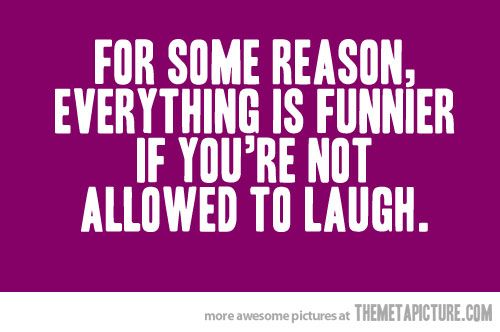 seriously.: Laughing, Life, Sotrue, Giggl, Dinners Tables, Funny Quotes, So True, Humor, True Stories