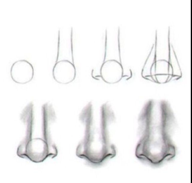 Výsledek obrázku pro kresba nos