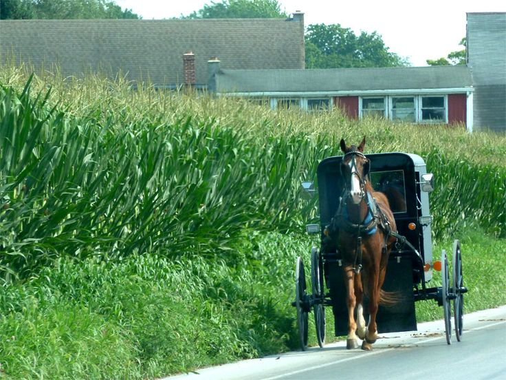 Roulotte en Pays Amish #USA