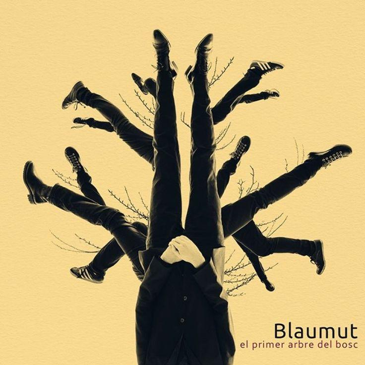 Blaumut - El primer arbre del bosc. Adquirit per la Biblioteca amb el suport de l'Institut d'Estudis Ilerdencs