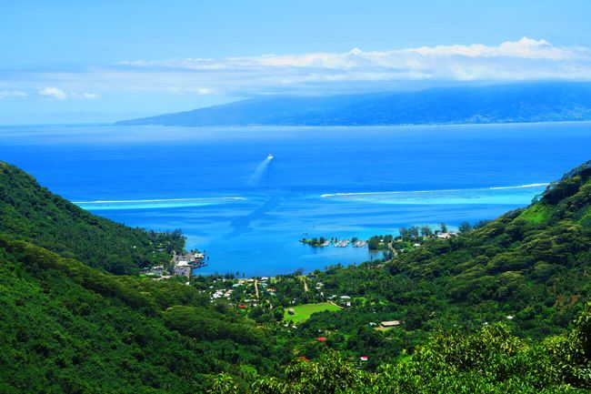 Top 10 Things To Do In Moorea Island | X Days In Y