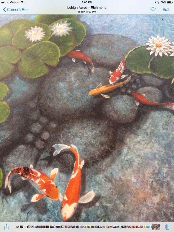 Trompe l'oeil koi fish pond on my lanai floor. Artwork and design by Louise Moorman